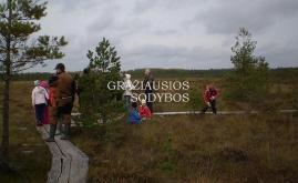 Kamanų gamtinis rezervatas