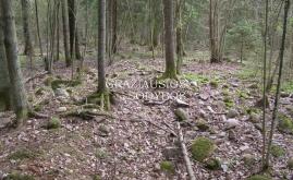 Auksūdžio piliakalnis