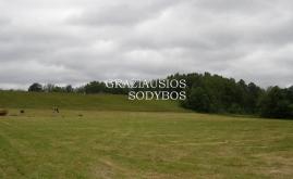 Martynaičių piliakalnis